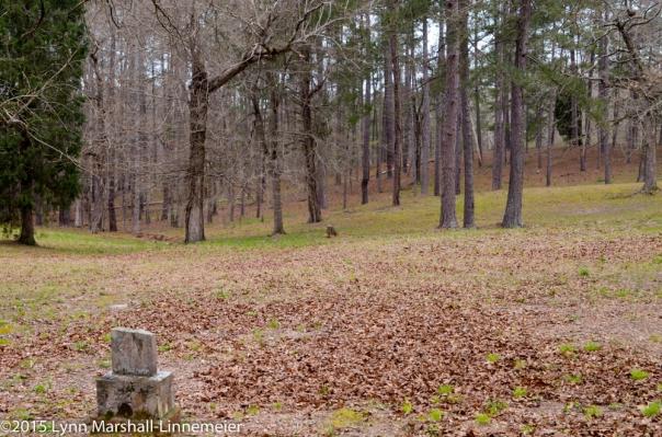 Cedar Lane Cemetery, Central State Hospital
